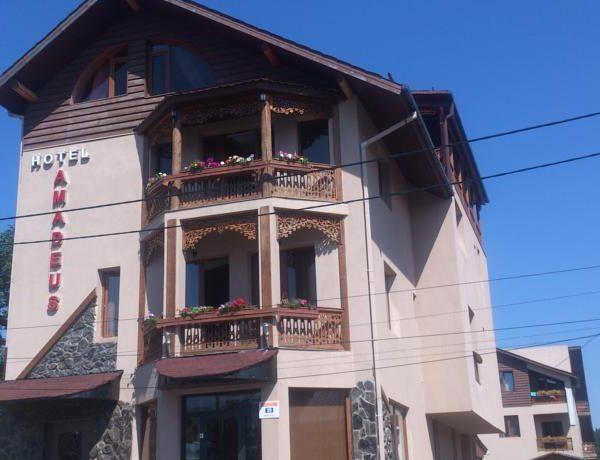 Hotel_in_Bakuriani_Amadeus (1)